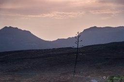 Al atardecer en la zona del Observatorio de Temisas. Sureste de Gran Canaria.